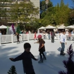 wwhotel06-synthetic-artificial-ice-rentals-bh-skating-events