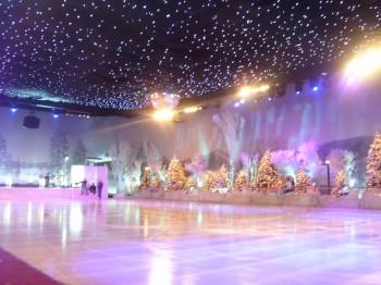 SnowParties.com also makes real or synthetic ice skating rinks! Call us today toll-free (877) 254-1268